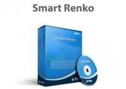 Smart Renko 400