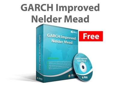GARCH Improved Nelder Mead 400