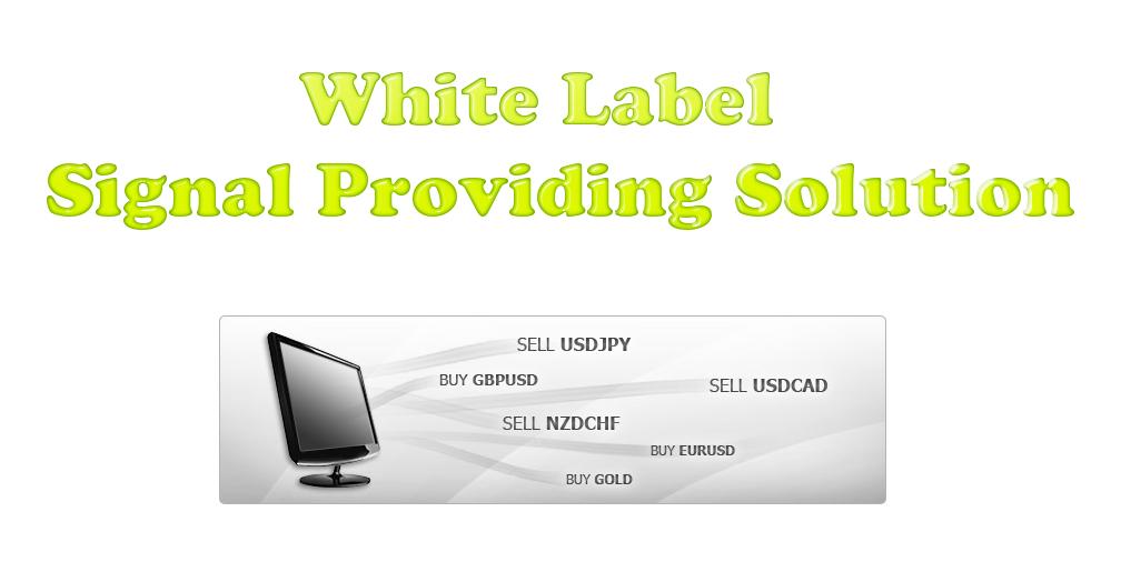 Algotrading-investment-Professional-Signal-Providing-Solution-e1