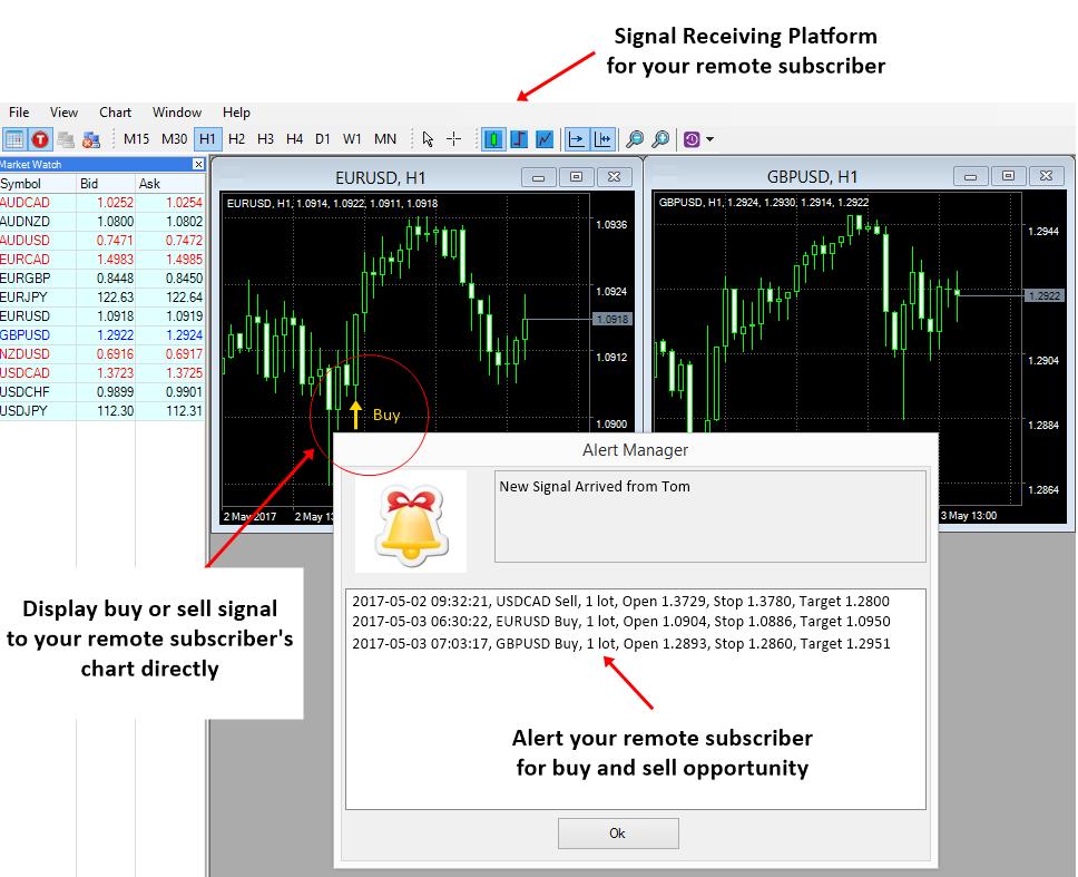 Algotrading-investment-Signal Providing Platform e8